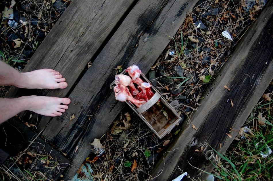 Poezja Ulicy / Mięso