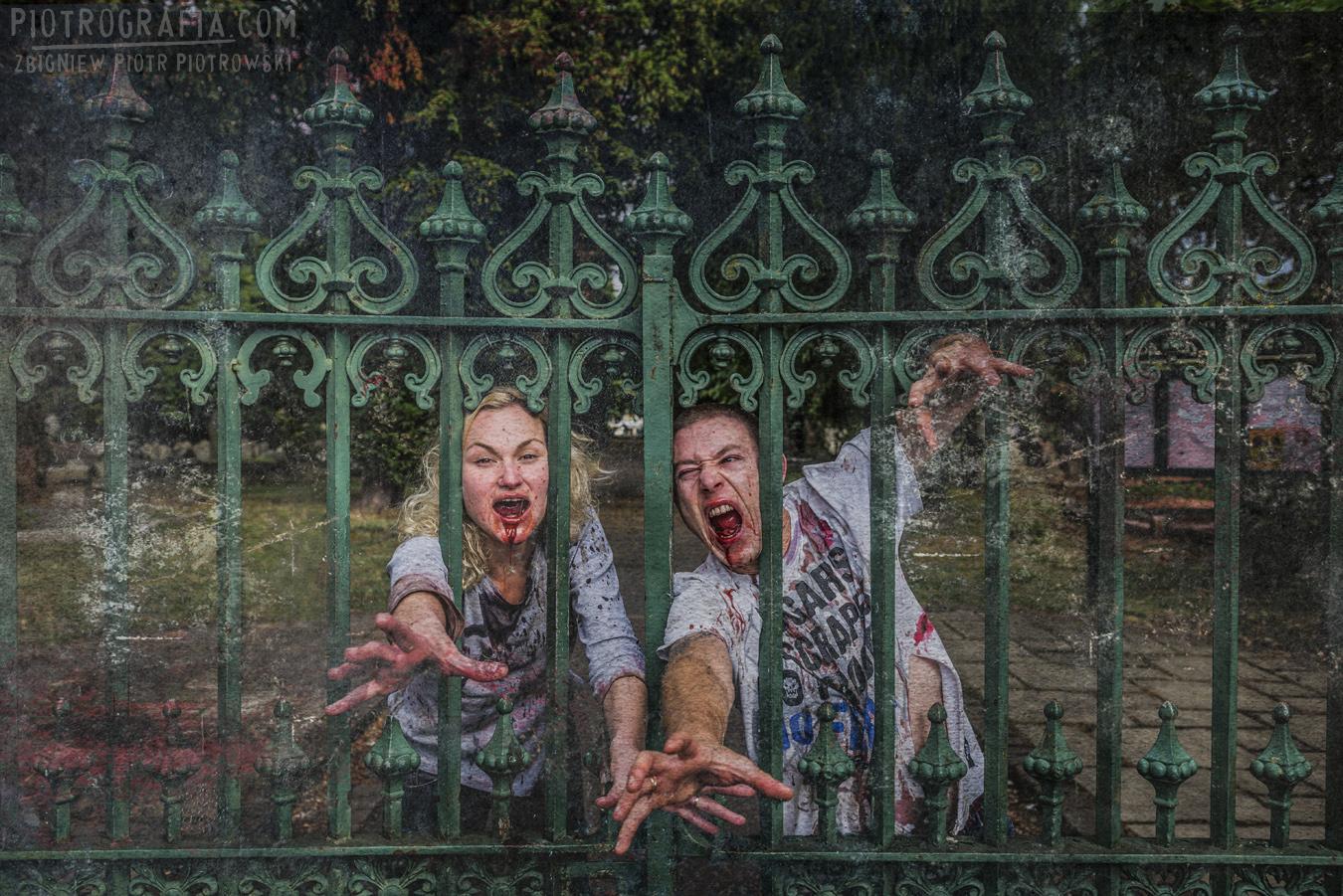 Na starym, angielskim cmentarzu…Zombie