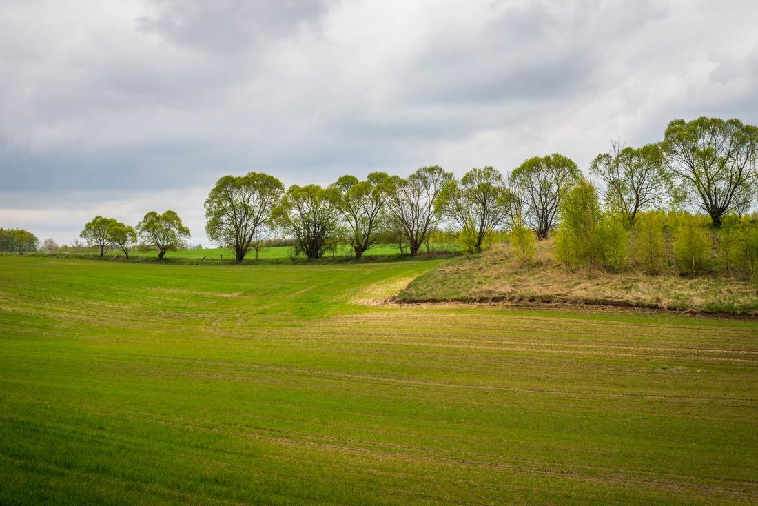 Majówka Rowerem na Mazury - ZbigniewPiotrPiotrowski - piotrografia (57)